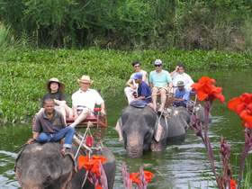Elephant Safari Hua Hin – Unique Sightseeing Adventures